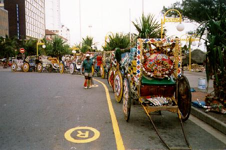 Zulu tourist rickshaws