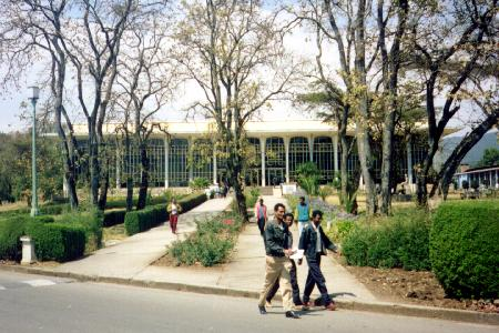 Library of the Addis-Abéba University